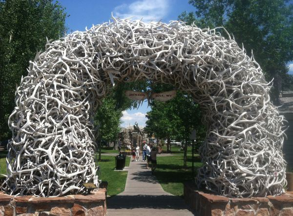 Town Square Antler Arch Art